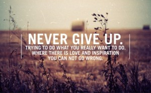 Never-give-up.-Trying-to-do-what-you-really-want-to-do.-Where-there-is-love-and-inspiration-you-can-not-go-wrong